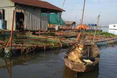 Ein etwas ungewohnter Kapitän auf dem Mekong