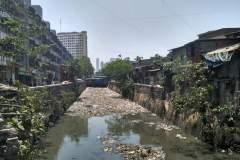 Völlig zugemüllter Fluss in Mumbai