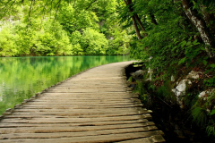 Die Holzstege sind schön in die Natur integriert