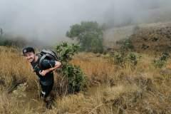 Aufstieg durch Gebüsch