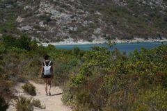 Toller Wanderweg durch Macchiabüsche immer am Meer entlang