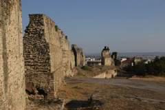 Stadtmauerruinen