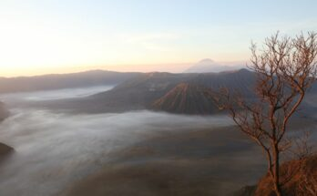 Blick auf den Mt. Bromo